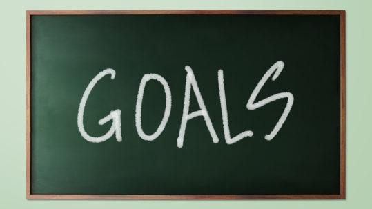 Goals & Priorities 2019